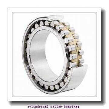 2.362 Inch | 60 Millimeter x 4.331 Inch | 110 Millimeter x 0.866 Inch | 22 Millimeter  LINK BELT MU1212UM  Cylindrical Roller Bearings