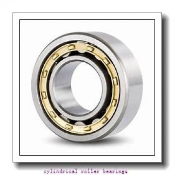 2.559 Inch | 65 Millimeter x 4.724 Inch | 120 Millimeter x 0.906 Inch | 23 Millimeter  LINK BELT MU1213UMW3  Cylindrical Roller Bearings