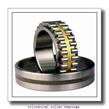 3.15 Inch | 80 Millimeter x 4.921 Inch | 125 Millimeter x 0.866 Inch | 22 Millimeter  LINK BELT MU1016DXW586  Cylindrical Roller Bearings